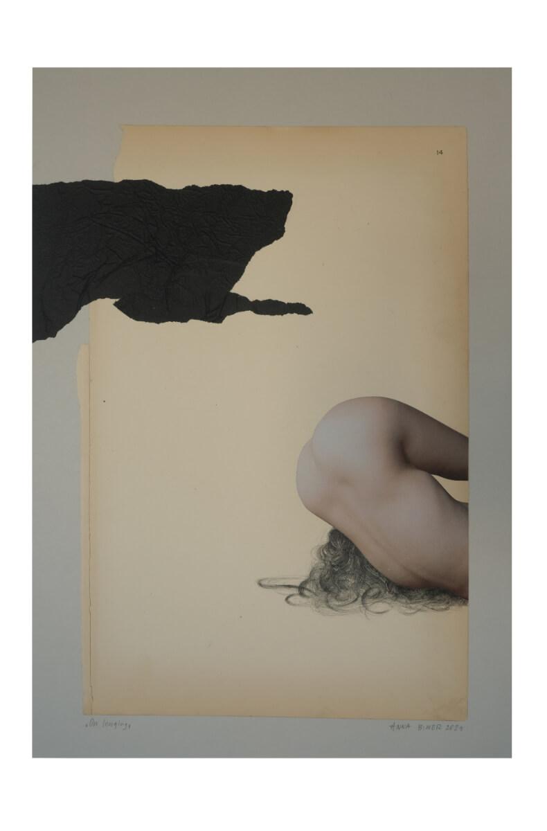 Anna Bimer - On longing